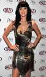 Katy Perry - Страница 4 Th_34723_Celebutopia-Katy_Perry_hosts_an_evening_at_Haze_Nightclub_in_Las_Vegas-02_122_237lo