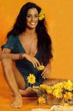 Sonia Braga Gabriela 1975 Foto 24 (Соня Брага Габриэлы 1975 Фото 24)